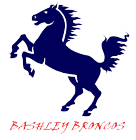 Bashley Broncos Indoor