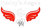 Harley's Angels Netball Team