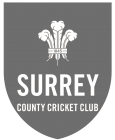 Surrey Disability Cricket
