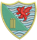 Ynystawe Junior Cricket Club